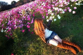 女性,20代,自然,花,秋,屋外,ピンク,コスモス,茶髪,人物,人,秋桜,海の中道