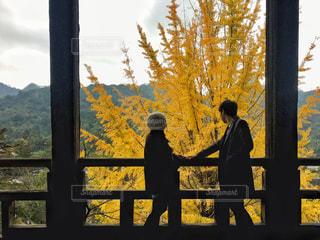 紅葉を眺めるカップルの写真・画像素材[2393557]