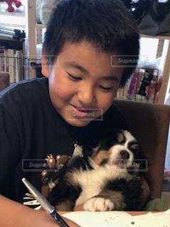 子供,子犬,勉強,宿題,大型犬,パピー,バーニーズマウンテンドック,一緒に勉強