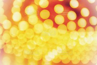 光の玉ボケの写真・画像素材[1102821]