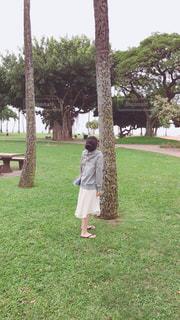 ヤシの木を見上げてる女の子の写真・画像素材[1120946]