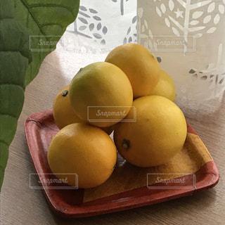 マイヤーレモン収穫の写真・画像素材[1786735]