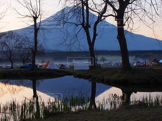 水の体の横にあるツリーの写真・画像素材[1225421]