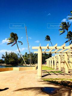 ハワイの晴天の写真・画像素材[1100116]