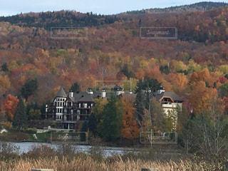 秋,紅葉,山,樹木,外国,旅行,カナダ