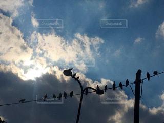 空には雲のグループの写真・画像素材[1115373]