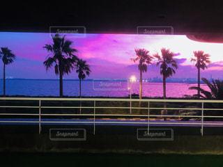 海,夕焼け,舞浜