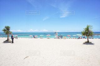 夏の沖縄の写真・画像素材[1217526]