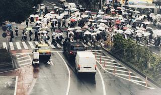 傘,渋谷,梅雨,6月,スクランブル交差点,フィルム風