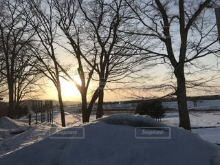 自然,空,夕日,屋外,田舎,帯広