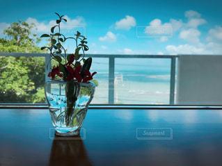 沖縄のcafeにての写真・画像素材[1102565]