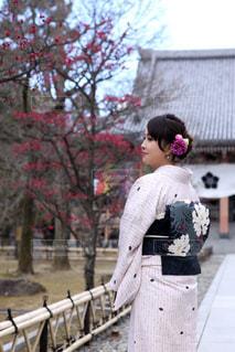 秋を感じて〜の写真・画像素材[1583342]