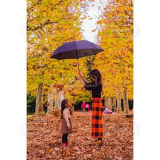 カラフルな傘を持っている人の写真・画像素材[1694626]