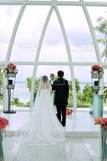 女性,男性,風景,花,後ろ姿,結婚式,人物,背中,新郎,後ろ,結婚式ドレス