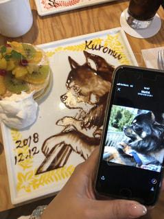 携帯電話を持ってるの写真・画像素材[2284373]