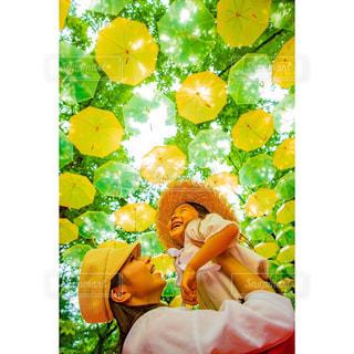黄色い傘クローズアップの写真・画像素材[2366043]