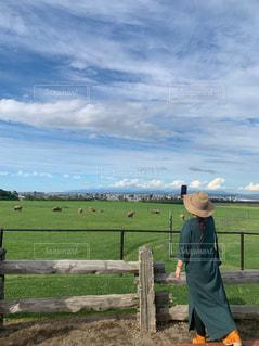 草原を見渡すの写真・画像素材[2514219]