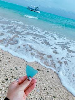 浜辺で珊瑚持つ手の写真・画像素材[2799302]