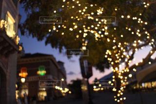 夜にライトアップされた都市の写真・画像素材[2820865]