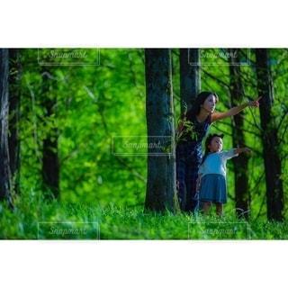 緑がいっぱいの写真・画像素材[3140040]
