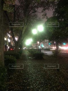 夜の濡れた歩道の写真・画像素材[1685267]