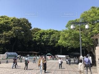 公園を歩いて人々 のグループの写真・画像素材[1229656]