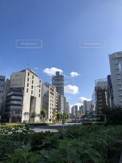 都市の高層ビルの写真・画像素材[1313944]