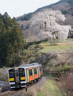 ローカル線と春の風景の写真・画像素材[1146321]