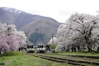 背景の山と、電車の中で電車のトラックします。 - No.1195801