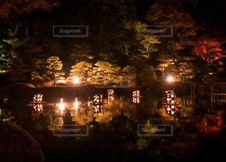 日本最古の日本庭園の紅葉ライトアップの写真・画像素材[1598132]