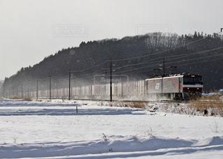 冬,雪,白,列車,機関車,winter,貨物,金太郎,電気機関車,train,スノー,貨物列車,ウインター,ブリザード