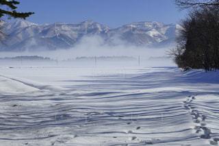 冬,雪,白,山,影,冬山,winter,コントラスト,スノー,ウインター