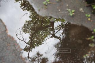 水溜りと額縁の写真・画像素材[2239441]