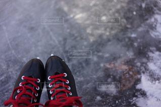 冬の写真・画像素材[1832714]