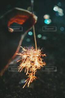 秋の写真・画像素材[3695045]