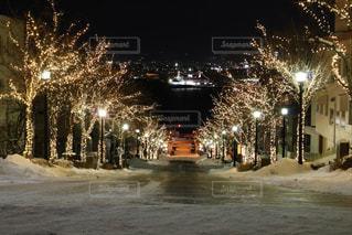 夜のライトアップされた街の写真・画像素材[1787476]