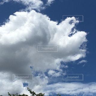 青空の写真・画像素材[1312456]