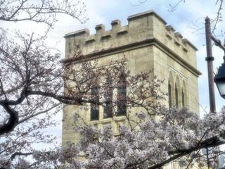桜のある景色の写真・画像素材[1127911]