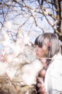 自然,風景,空,公園,春,桜,屋外,東京,梅,散歩,樹木,ポートレート,昭和記念公園,立川,桃,日中