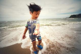 海の宝物の写真・画像素材[1439847]