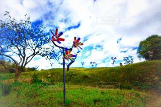 フィールドに凧の飛行人の写真・画像素材[1615517]