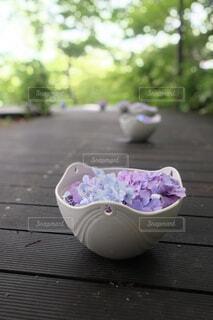 紫陽花ロードの写真・画像素材[4377660]