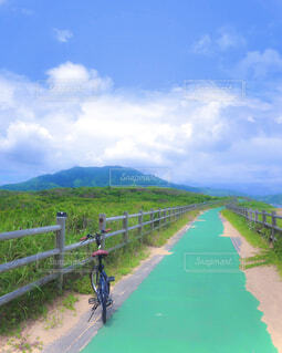 新緑のサイクリングロードの写真・画像素材[4407821]