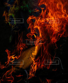 焚火の写真・画像素材[4444912]