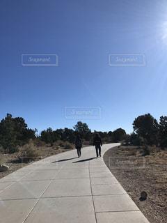 道の端に木のパスの写真・画像素材[1119912]