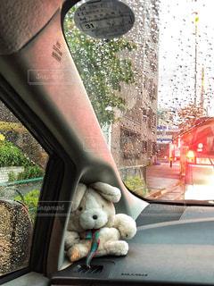 うさぎ,雨,車内,ぬいぐるみ,梅雨,雨粒,雨降り,フロントガラス