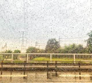 雨粒の車窓の写真・画像素材[1262905]