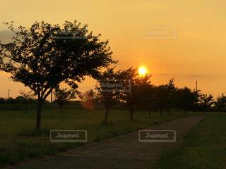 夕暮れの空🍊の写真・画像素材[1268684]