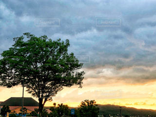 空には雲のグループの写真・画像素材[1268720]