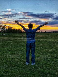 男性,空,夕日,木,緑,雲,夕暮れ,ジーンズ,手,草,夕陽,後ろ,日暮れ,両手,後向き,広げて